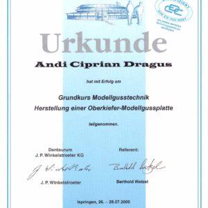 Diploma 22
