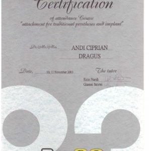Diploma 28
