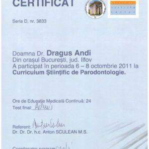 Diploma 33